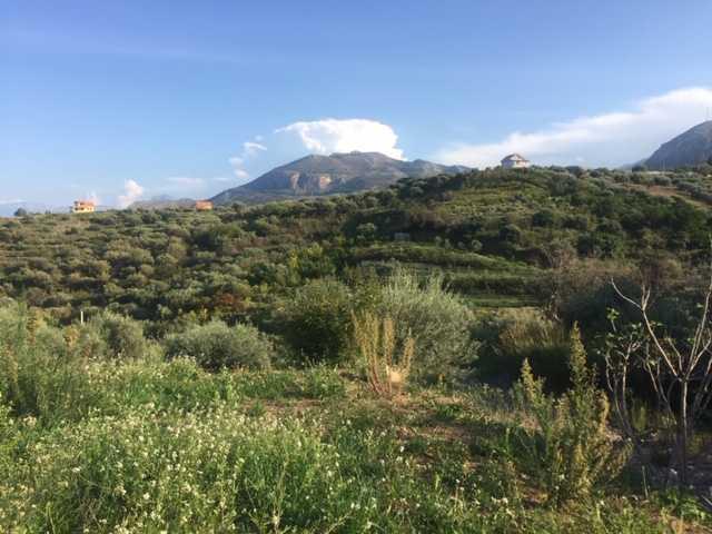 For sale Rural/farmhouse Casteldaccia Cast. Fiorilli - Ferrante #CA338 n.2