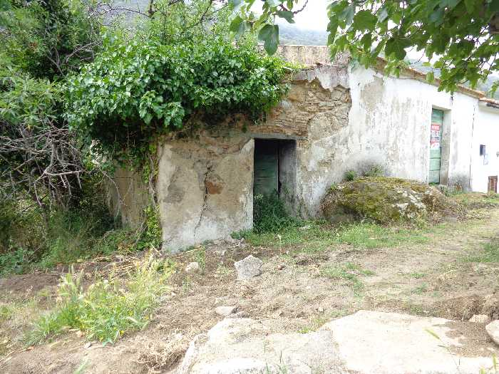 For sale Rural/farmhouse Marciana S. Andrea/La Zanca #2915 n.2