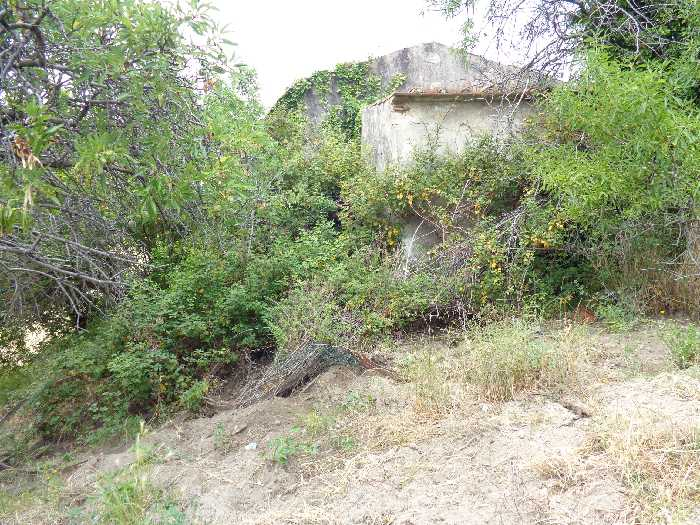 For sale Rural/farmhouse Marciana S. Andrea/La Zanca #2915 n.3