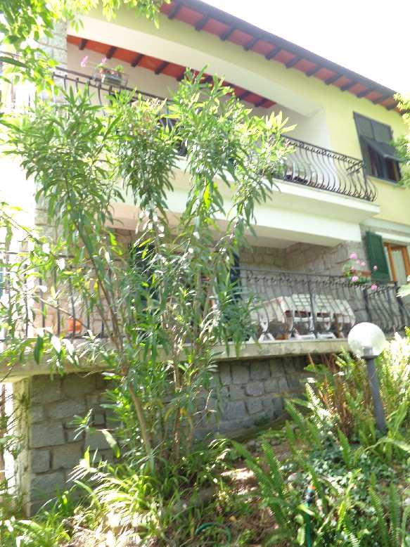 For sale Detached house Marciana S. Andrea/La Zanca #4213 n.1+1