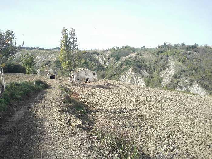 Venta Casa de campo Monterubbiano  #Mrb007 n.3