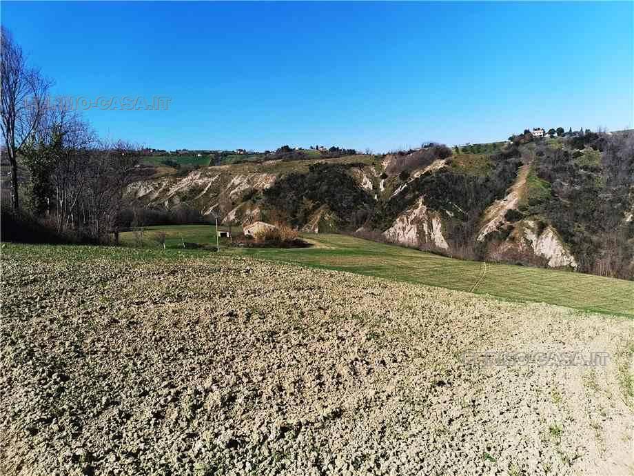 For sale Rural/farmhouse Monterubbiano  #Mrb007 n.4