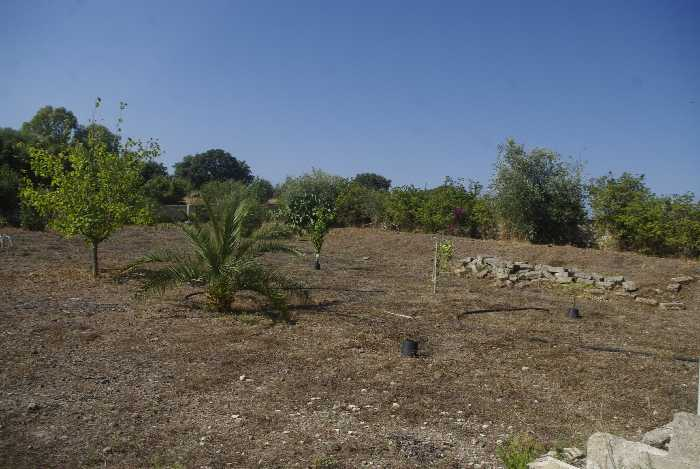 For sale Land Melilli  #36T n.4