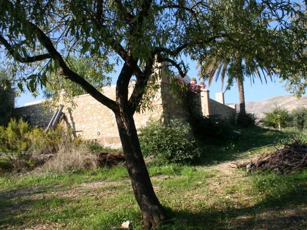 For sale Land Noto  #62T n.3