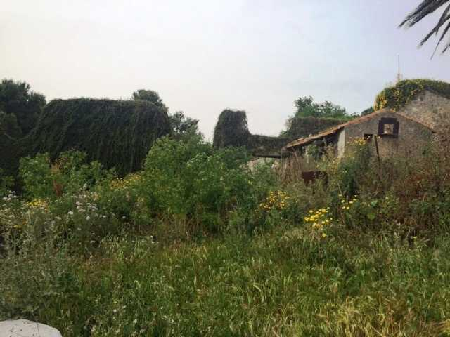 For sale Rural/farmhouse CASTELDACCIA Cast.Traversa-Vallecorvo #CA196 n.9+1