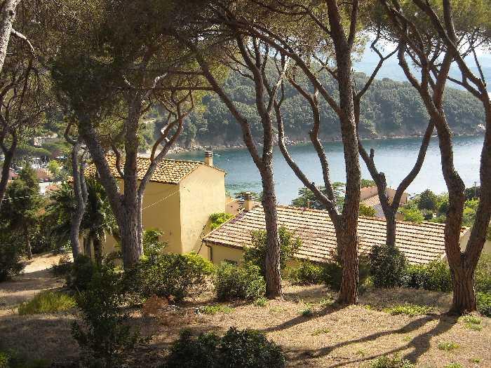 For sale Rural/farmhouse Portoferraio loc. Bagnaia #605 n.7