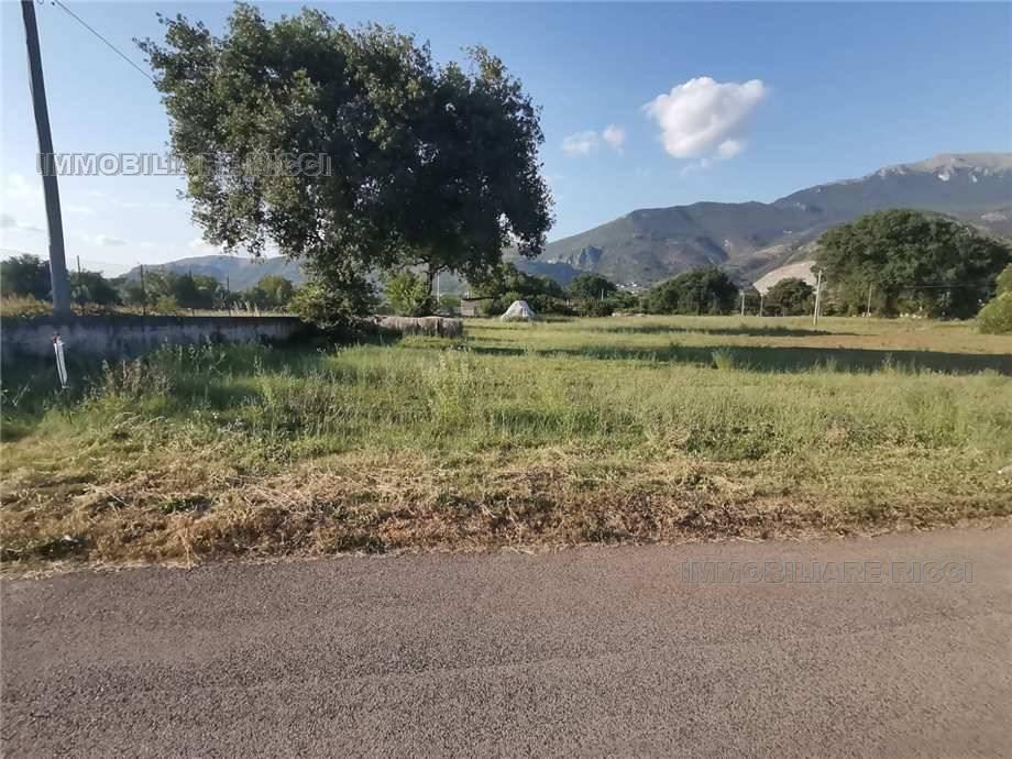 For sale Land Castrocielo  #45 n.4