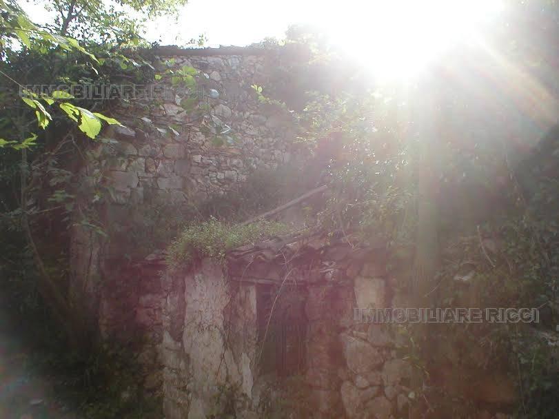 Rural/farmhouse Pastena 54