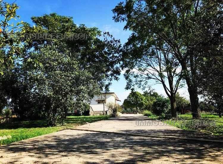 Venta Villa/Casa independiente Pontecorvo  #72 n.6