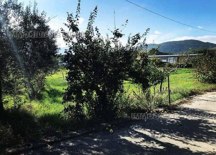 Venta Villa/Casa independiente Pontecorvo  #72 n.8