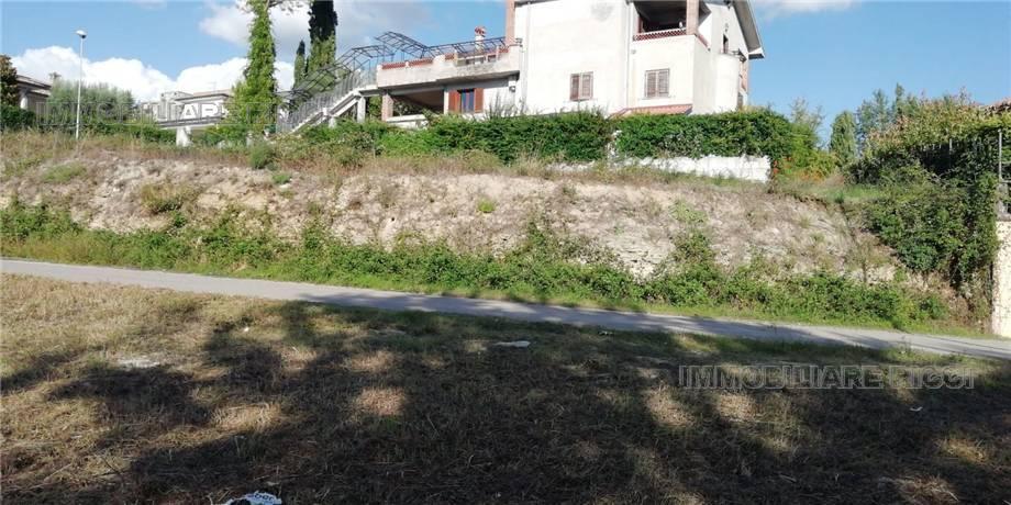 For sale Land Pontecorvo  #81 n.3