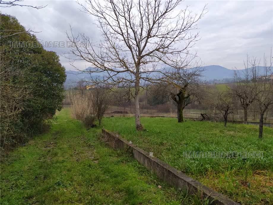 Vendita Villa/Casa singola Pontecorvo  #109 n.5