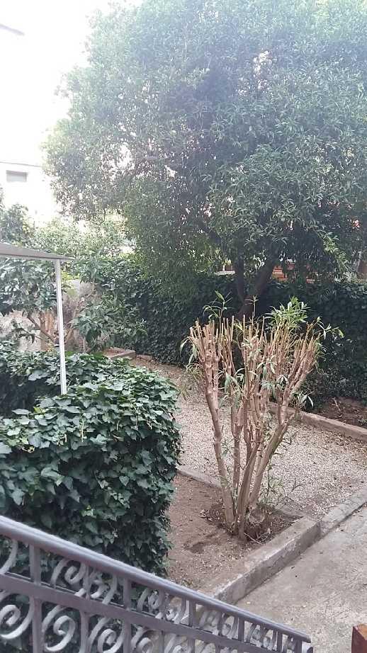 Vendita Appartamento Porto Azzurro  #PA168 n.5