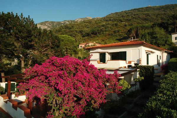 Villa/Casa singola Marciana #MA23