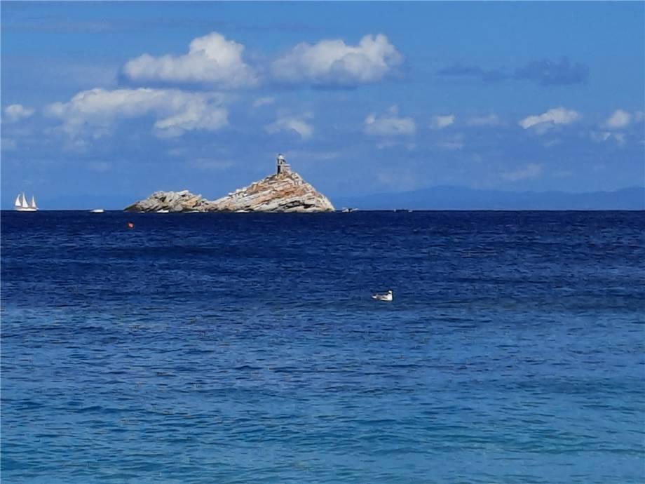 Vendita Affitto vacanza Portoferraio  #PF132 n.8