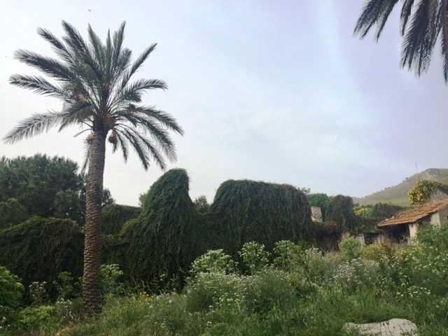 For sale Rural/farmhouse Casteldaccia Cast.Traversa-Vallecorvo #CA196 n.5