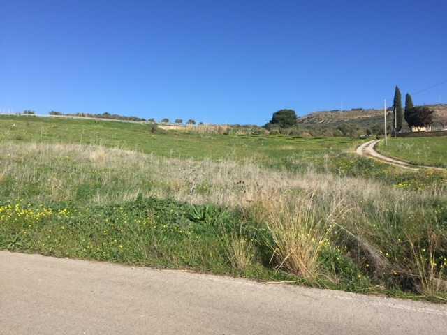 For sale Land Casteldaccia Cast.Traversa-Vallecorvo #CA289 n.3