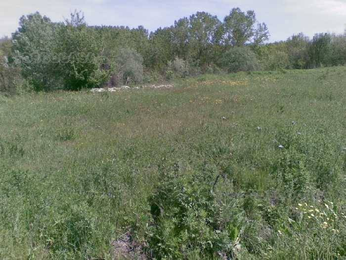 For sale Land Fucecchio  #TE39 n.3