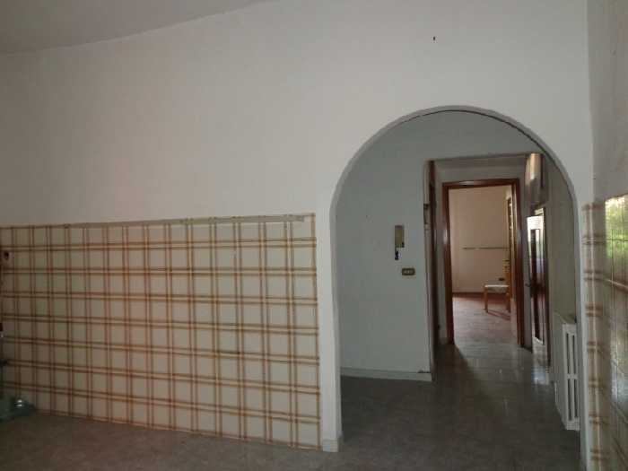 For sale Semi-detached house Santa Croce sull'Arno  #1329 n.3