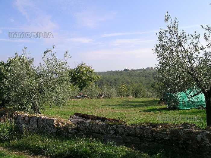 Azienda Agricola Laterina Pergine Valdarno 275