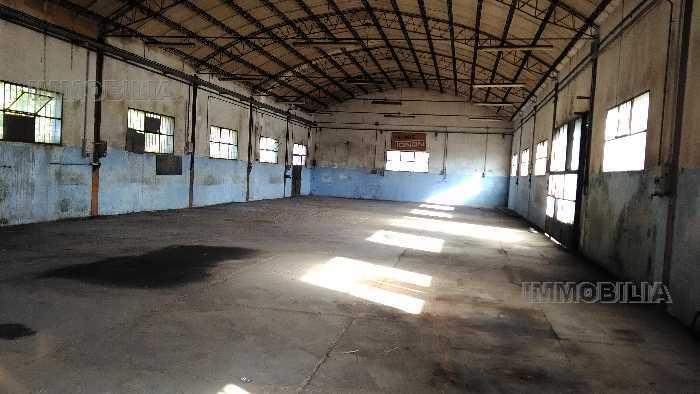 Industrial/Warehouse Sansepolcro 299