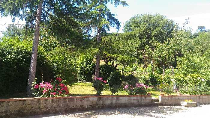 For sale Detached house Citerna FIGHILLE #324 n.3