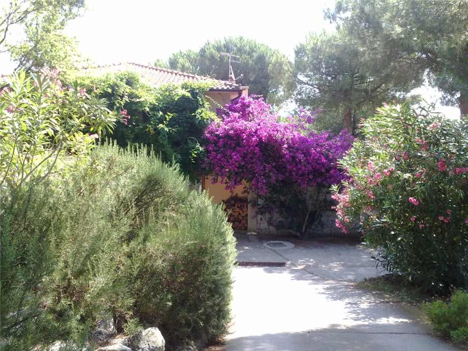 For sale Detached house Campo nell'Elba Marina di Campo #1920 n.3