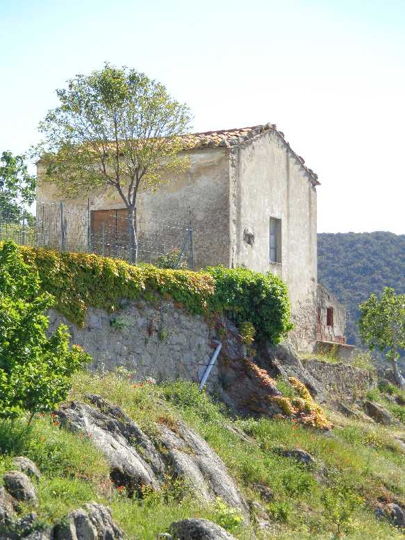 Rural/farmhouse Marciana 3961