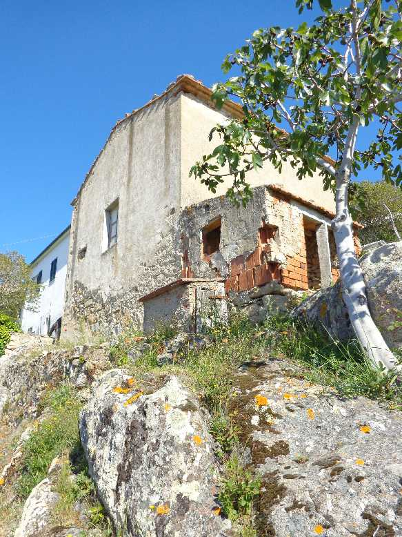 For sale Rural/farmhouse Marciana Patresi/Colle d'Orano #3961 n.3