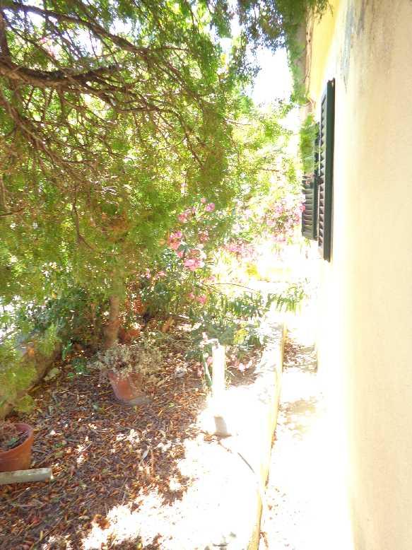 Vendita Appartamento Marciana Patresi/Colle d'Orano #4107 n.3