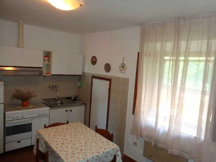 Vendita Appartamento Marciana Patresi/Colle d'Orano #4107 n.5