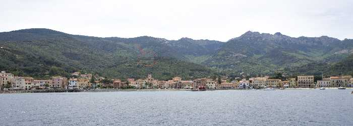 Vendita Azienda Agricola Marciana Marina Marciana Mar. altre zone #4192 n.5