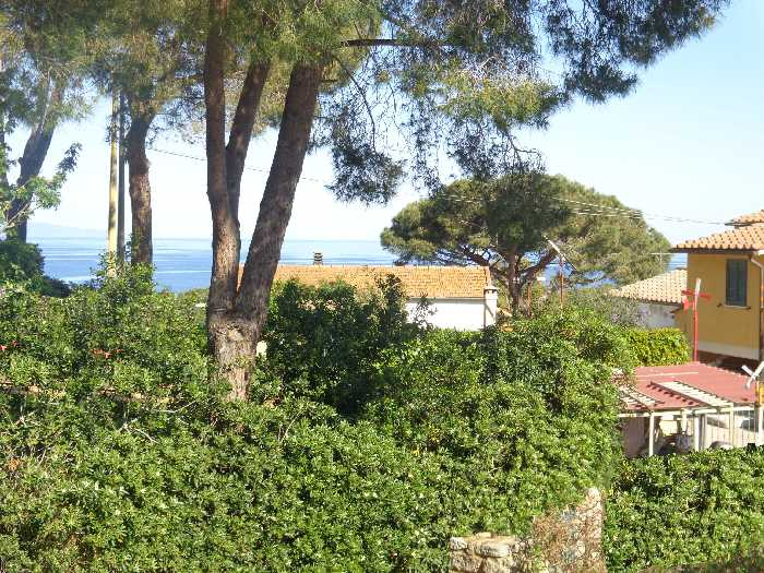 For sale Detached house Marciana Procchio/Campo all'Aia #4364 n.4
