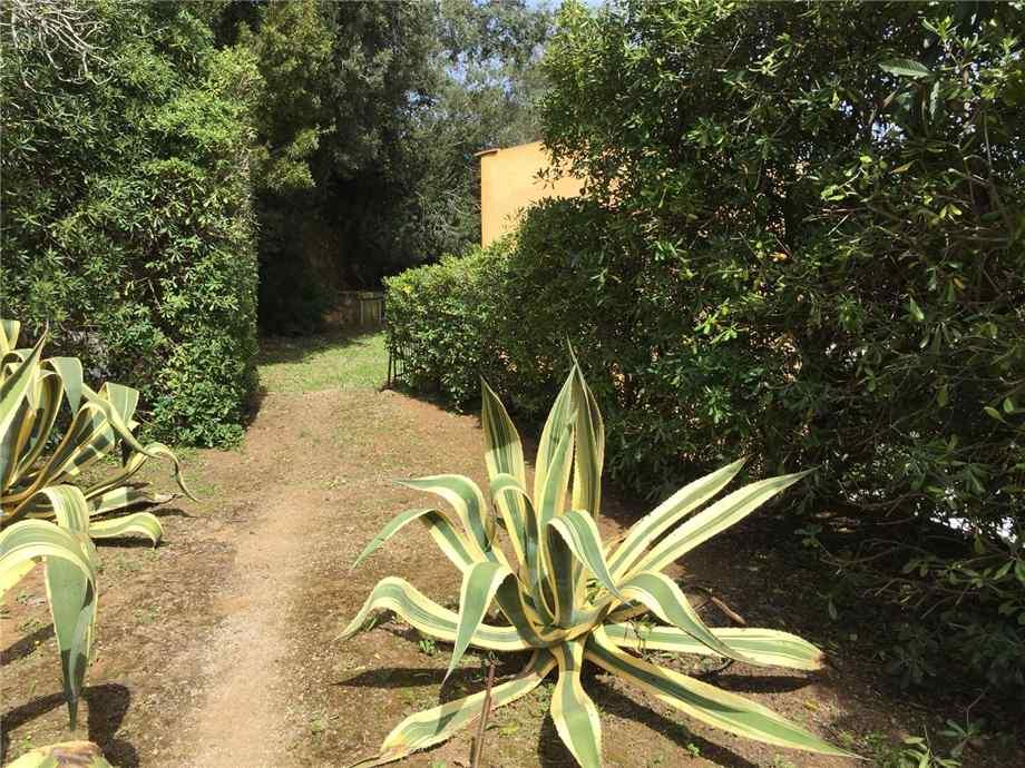 For sale Detached house Capoliveri Naregno/Straccoligno #4456 n.4