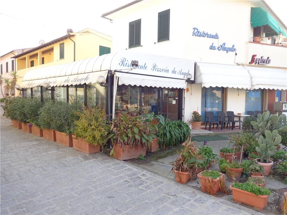 Local commercial Marciana 4566