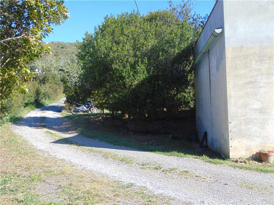 Vendita Terreno Campo nell'Elba Bonalaccia/Filetto #4789 n.2