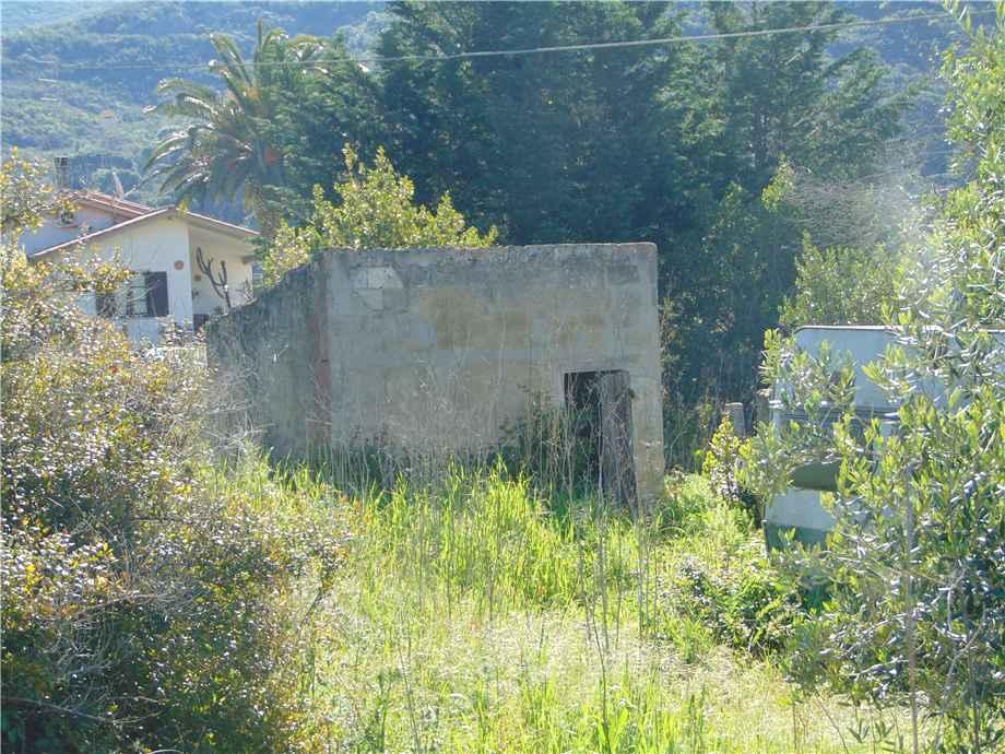 Vendita Terreno Campo nell'Elba Bonalaccia/Filetto #4789 n.3