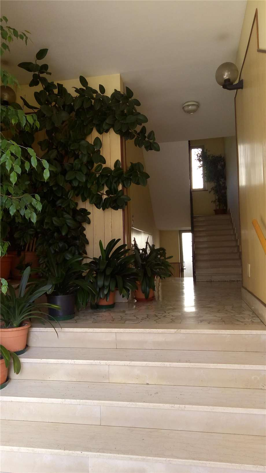 For sale Flat Casale Monferrato  #AC-342 n.1