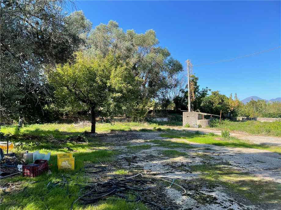 For sale Other commercials Nocera Inferiore  #221 n.9