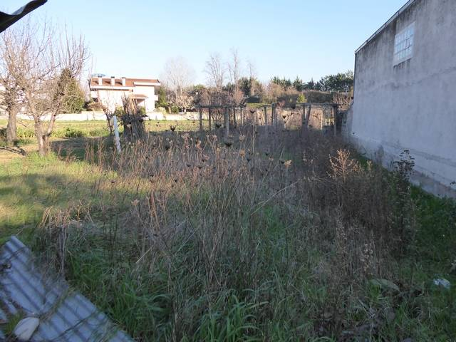 For sale Detached house Altino  #CV 53 n.25
