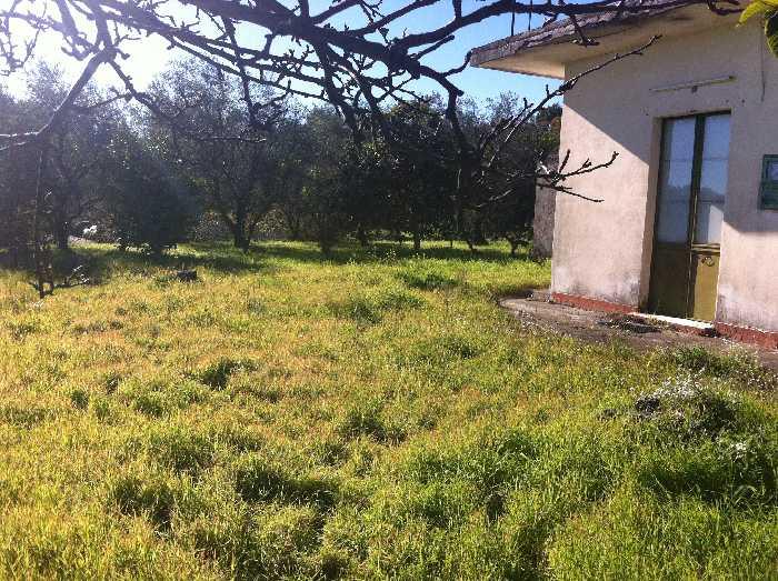 Vendita Villa/Casa singola Piedimonte Etneo  #41 n.5