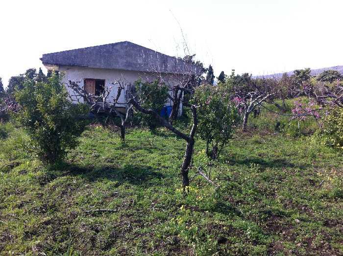 Vendita Terreno Fiumefreddo di Sicilia  #57 n.2