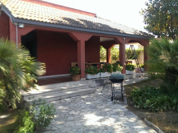 For sale Detached house Nettuno  #45V n.3