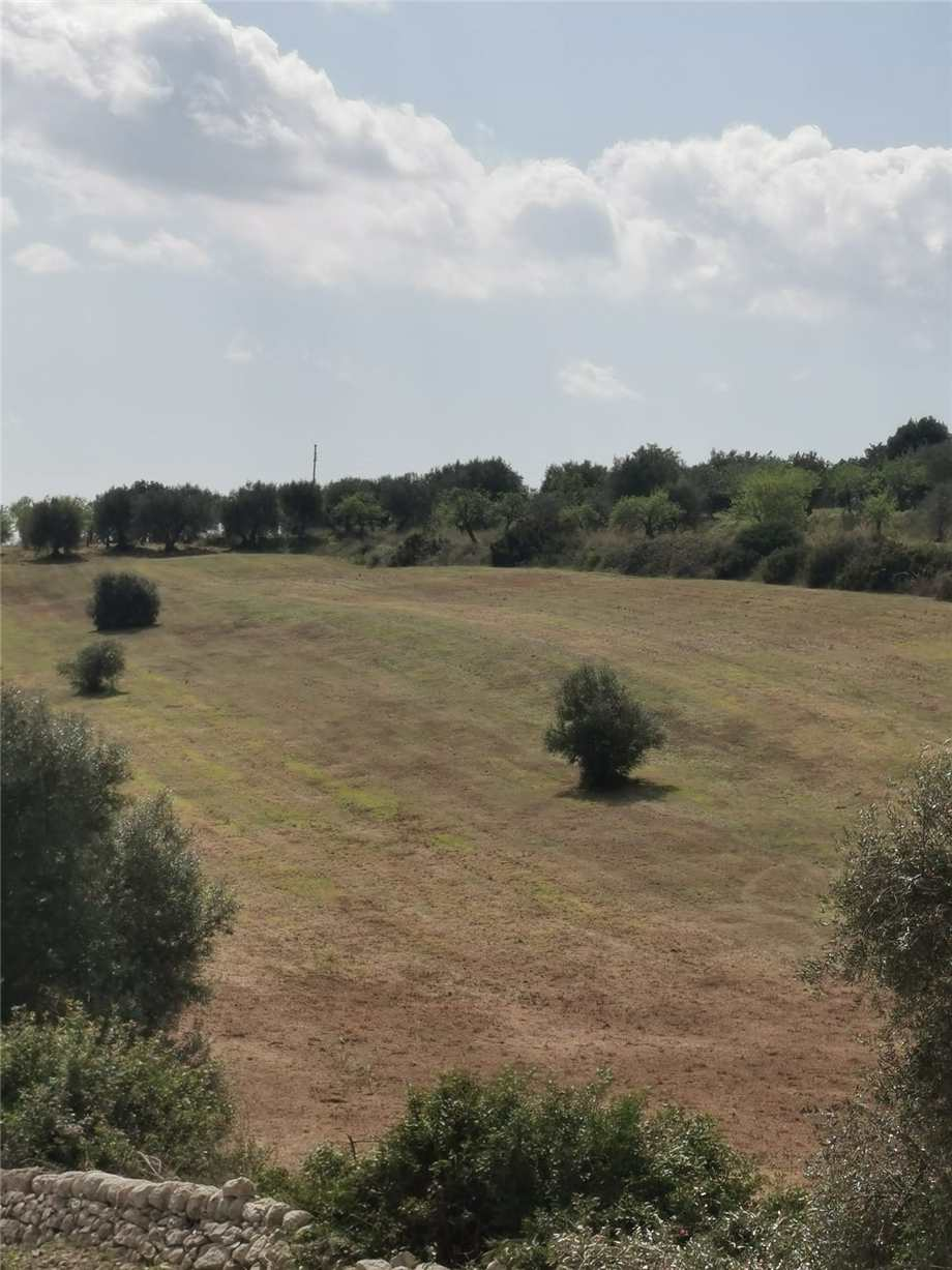 For sale Land Noto  #107T n.10