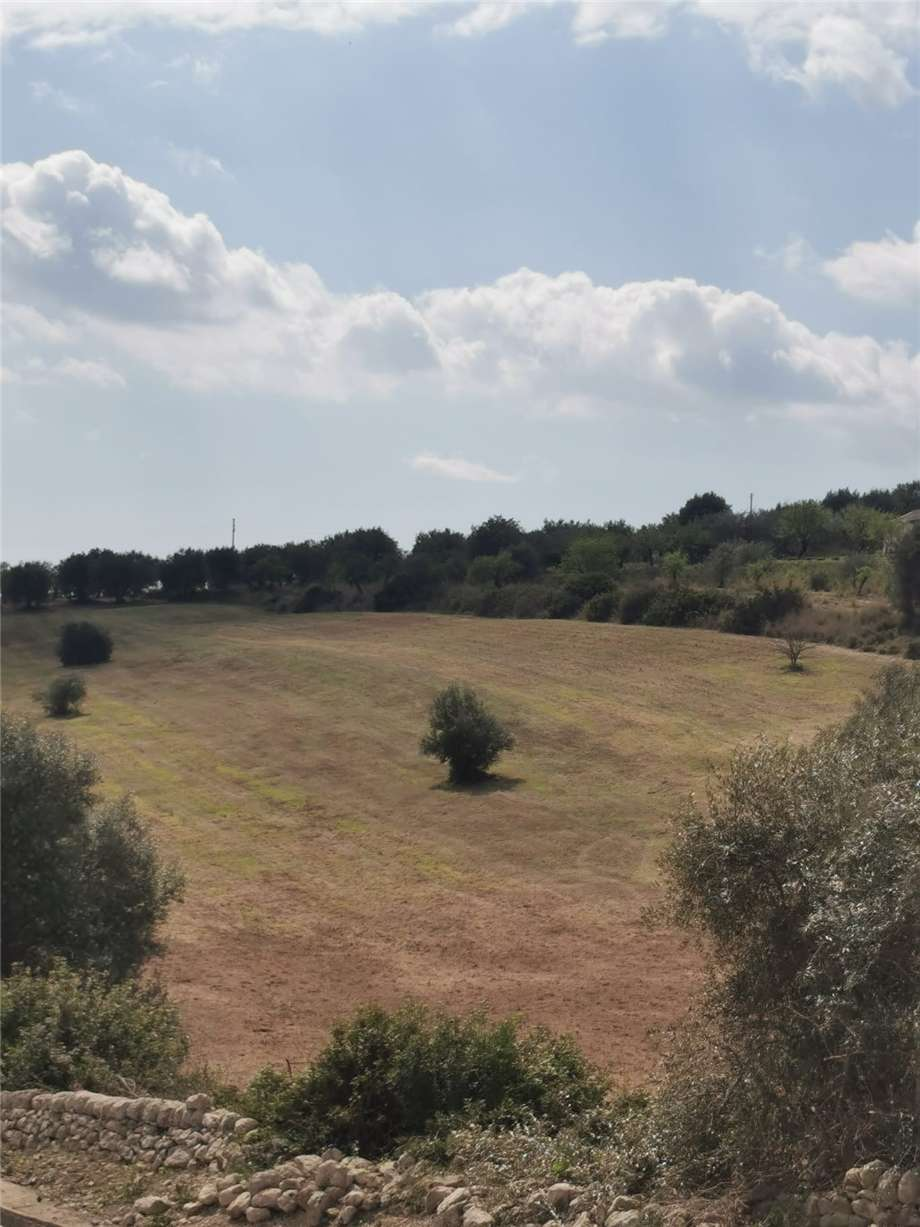 For sale Land Noto  #107T n.15