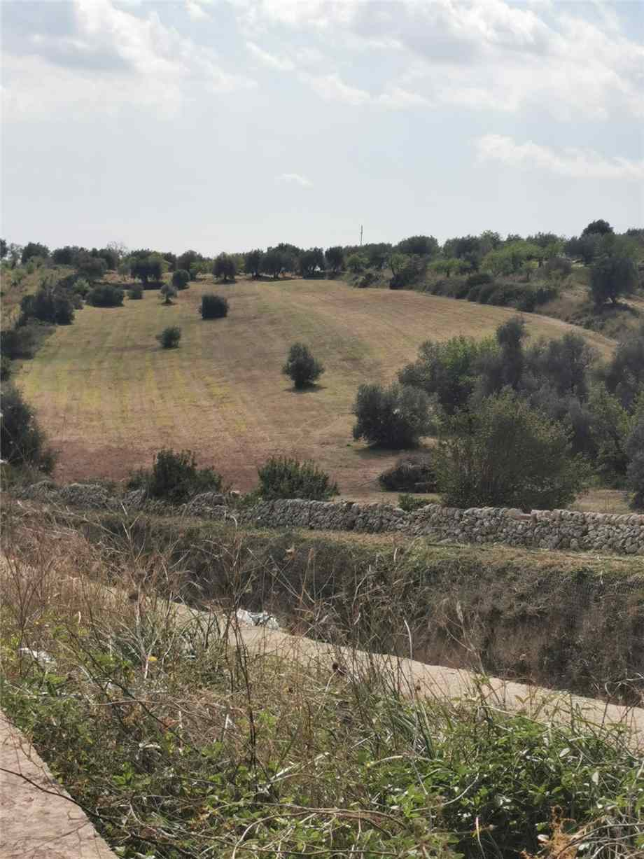 For sale Land Noto  #107 n.2