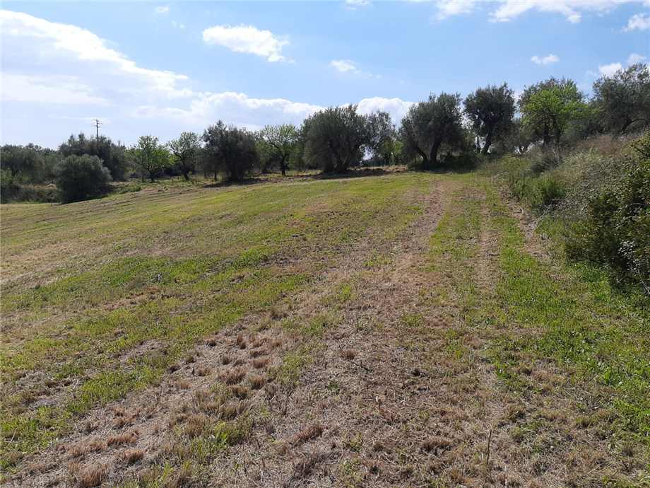 For sale Land Noto  #107T n.6