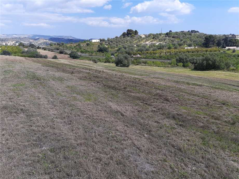 For sale Land Noto  #107T n.7