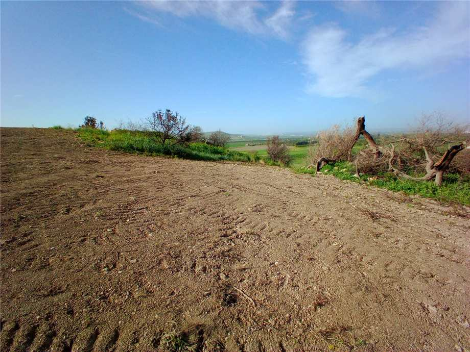For sale Land Noto  #110T n.9