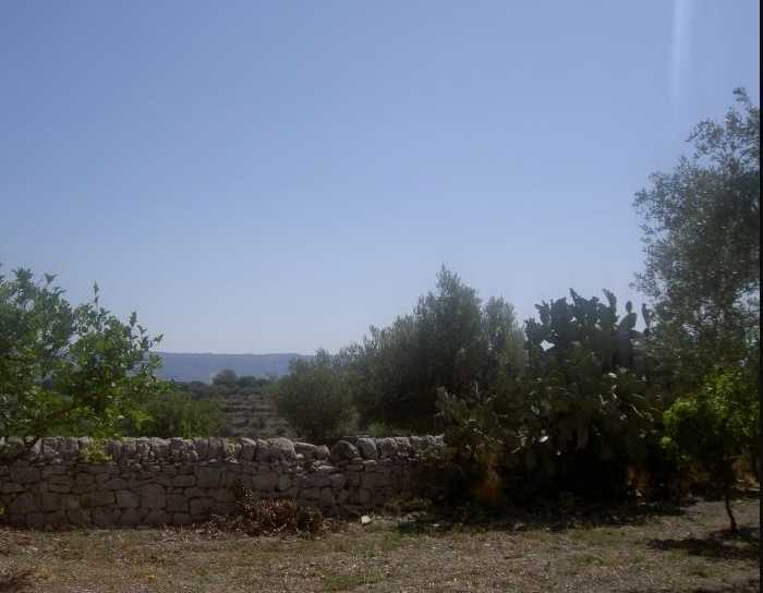 For sale Rural/farmhouse Modica  #1TM n.4